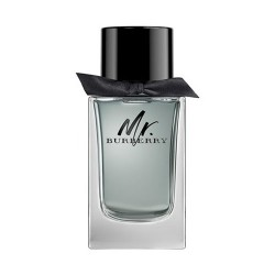 Mr Burberry - Eau de Toilette